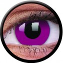 Crazy Purple