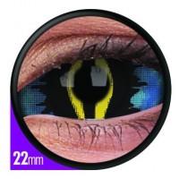Xorn NB! 22mm (Toimitusaika 3-5 viikkoa)